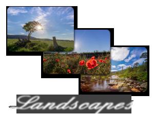 thumbnail_land-geli